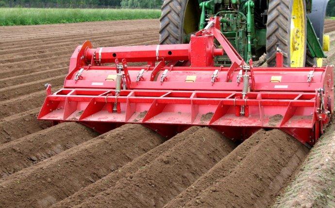 Почва под картофель: подготовка, обработка земли