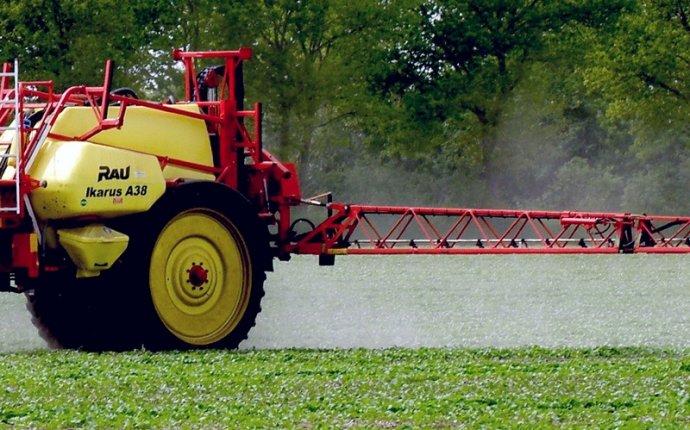 Технология возделывания ярового рапса : German Seed Alliance